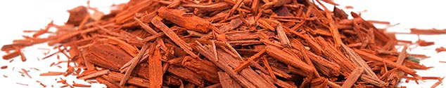Sandalwood bark pieces in a pile.